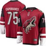 Fanatics Branded Kyle Capobianco Arizona Coyotes Garnet Breakaway Player Jersey