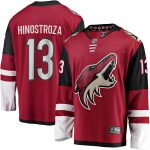 Fanatics Branded Vinnie Hinostroza Arizona Coyotes Garnet Breakaway Player Jersey