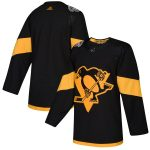 adidas Pittsburgh Penguins Black 2019 NHL Stadium Series Authentic Jersey